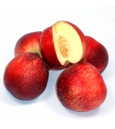 4 Nectarines blanches (taille moyenne)